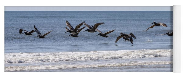 Brown Pelicans In Flight Yoga Mat
