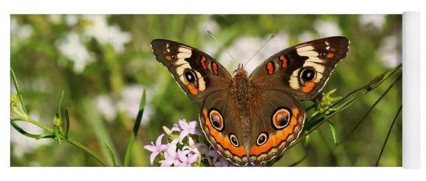 Buckeye Butterfly Posing Yoga Mat