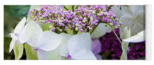 Buds And Blooms, Hydrangea Or China Rose Yoga Mat