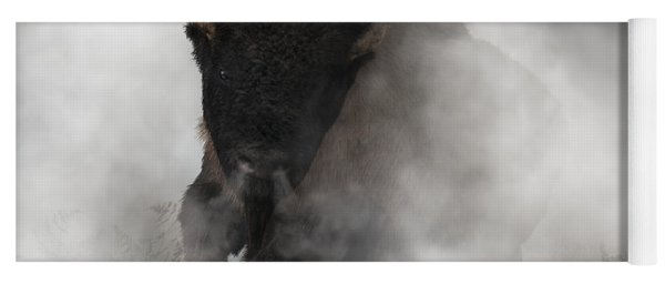 Buffalo Emerging From The Fog Yoga Mat
