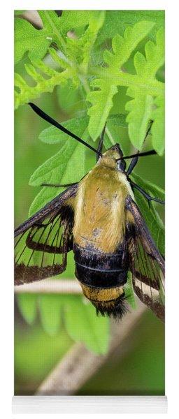 Bug On A Leaf Yoga Mat