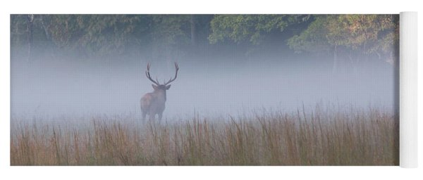 Bull Elk Disappearing In Fog - September 30 2016 Yoga Mat