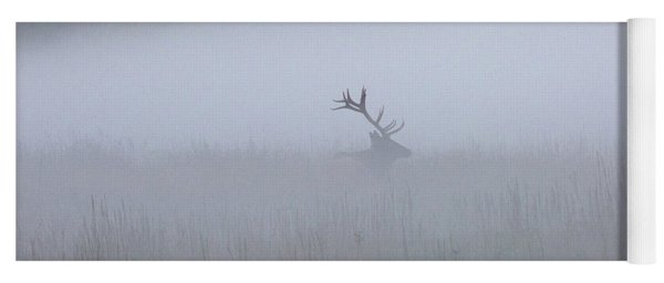 Bull Elk In Fog - September 30, 2016 Yoga Mat