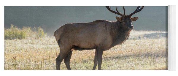 Bull Elk Watching Yoga Mat
