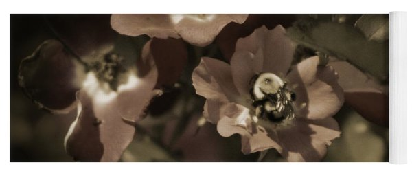 Bumblebee On Blush Country Rose In Sepia Tones Yoga Mat