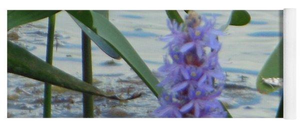 Bumblebee Pickerelweed Moth Yoga Mat