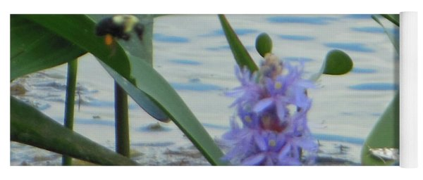 Yoga Mat featuring the photograph Bumblebee Pickerelweed Moth by Rockin Docks Deluxephotos