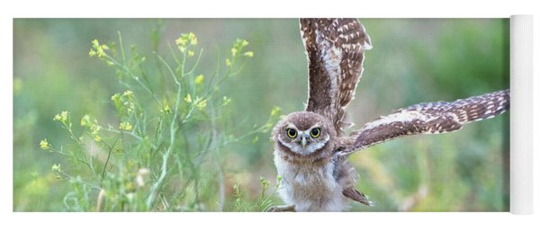 Burrowing Owl Spies Grasshopper Yoga Mat