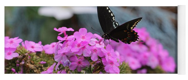 Butterfly -- Black On Pink Yoga Mat