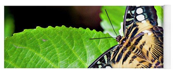 Butterfly 13a Yoga Mat