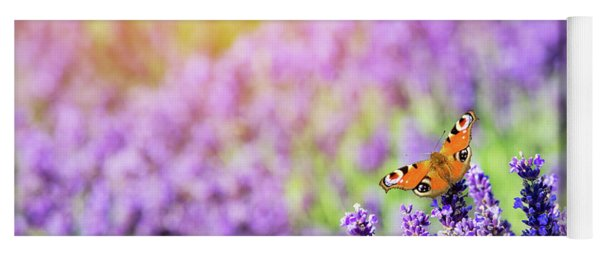 Butterfly Sitting On Lavender Flower. Yoga Mat