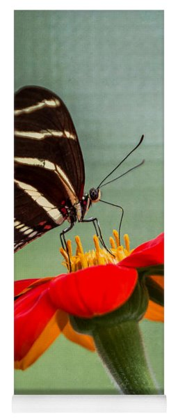 Yoga Mat featuring the photograph Butterfly Zebra Longwing On Zinnia by Patti Deters