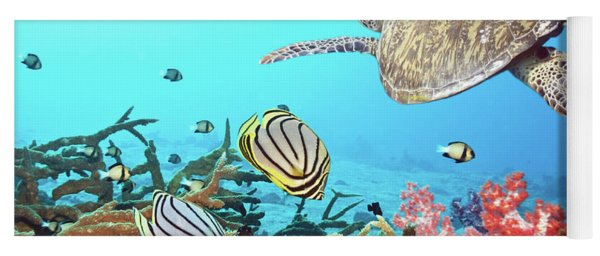 Butterflyfishes And Turtle Yoga Mat