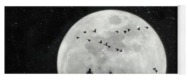 By The Light Of The Silvery Moon - Birds  Yoga Mat