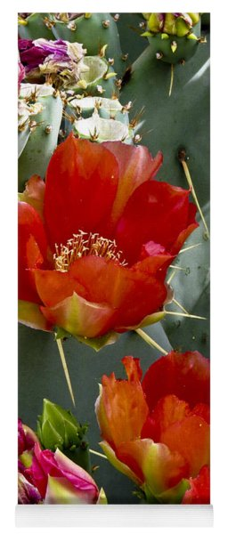 Cactus Blossom Yoga Mat