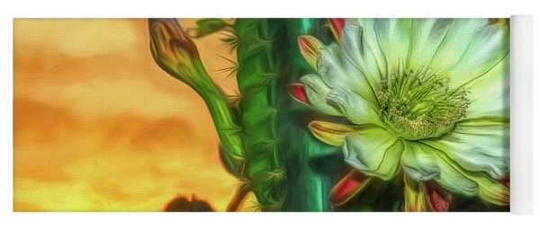 Cactus Flower At Sunrise Yoga Mat