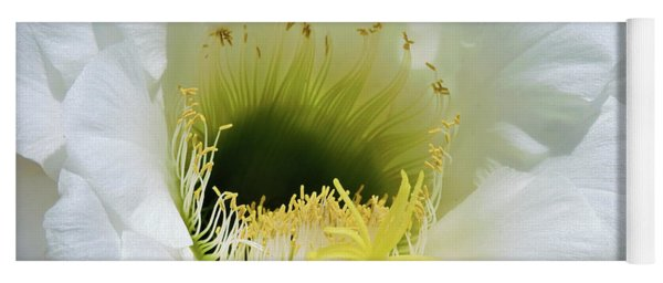 Cactus Flower Yoga Mat