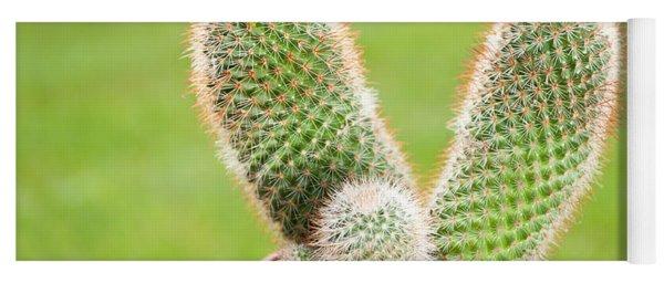 Cactus Flowering Pink Flowerets Yoga Mat