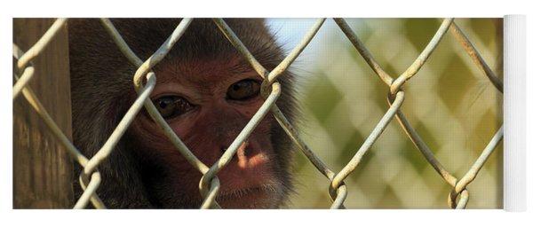 Caged Monkey Yoga Mat