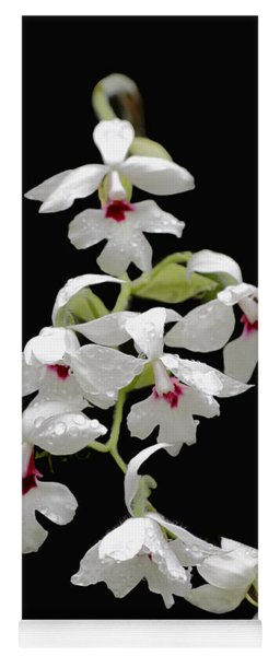 Calanthe Vestita Orchid Yoga Mat