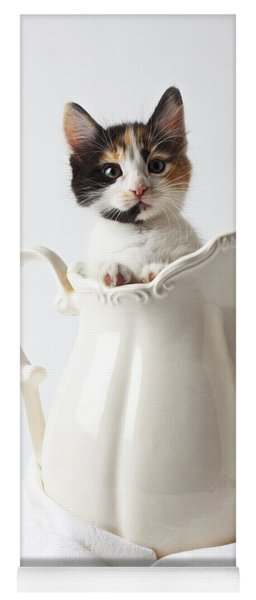 Calico Kitten In White Pitcher Yoga Mat