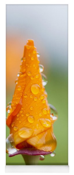 Yoga Mat featuring the photograph California Poppy In The Rain by Robert Potts