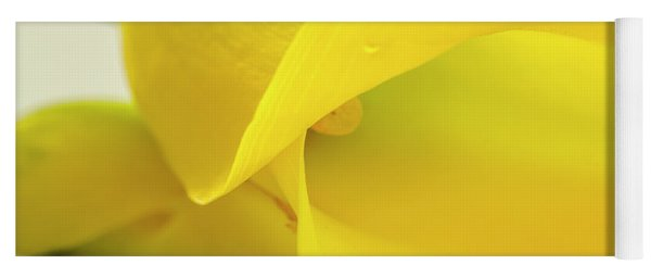 Calla Lily In Yellow Yoga Mat
