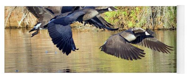 Canada Geese 100317-6524-2cr Yoga Mat