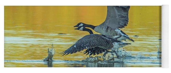 Canada Geese 5084-092117-2cr Yoga Mat