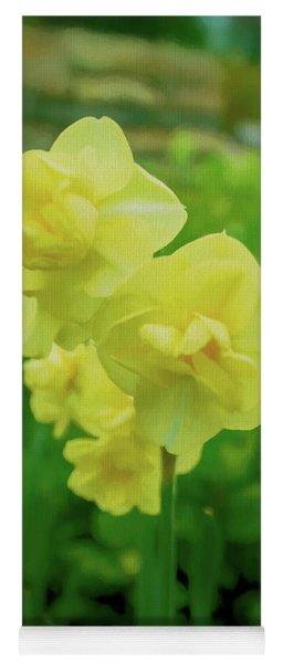 Canary Yellow Daffodils Yoga Mat