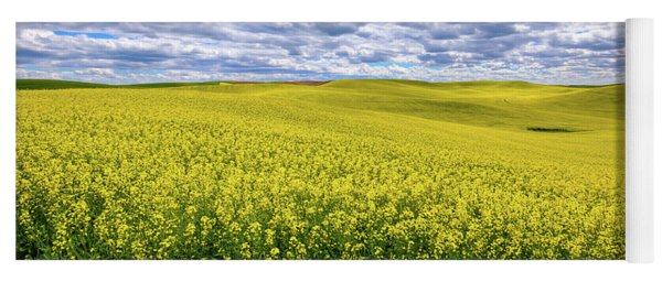 Canola On The Palouse Yoga Mat