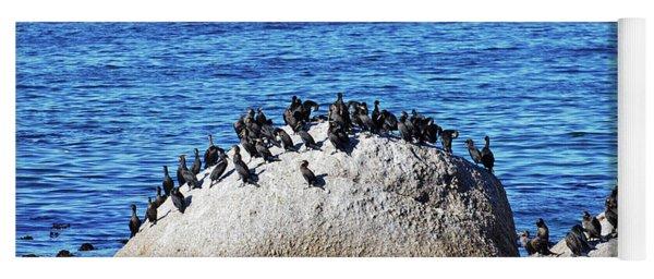 Cape Cormorants And Cape Of Good Hope Yoga Mat