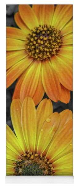 Cape Daisy's - Orange Yoga Mat