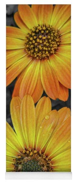 Cape Daisy's - Orange Yoga Mat