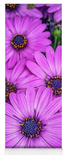 Cape Daisys - Purple Yoga Mat
