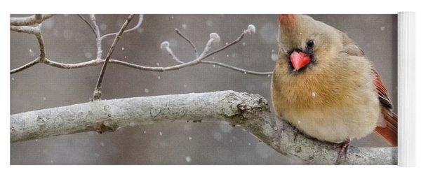 Cardinal And Falling Snow Yoga Mat