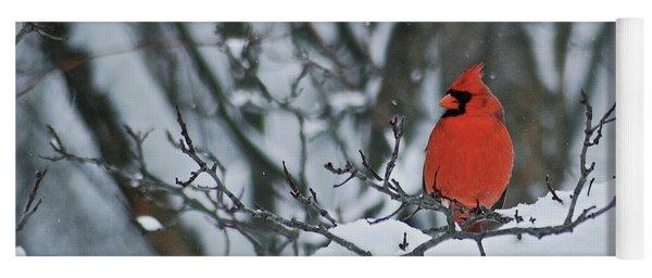 Cardinal And Snow Yoga Mat
