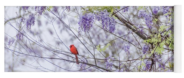Cardinal And Wisteria Yoga Mat