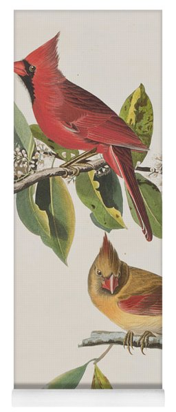 Cardinal Grosbeak Yoga Mat