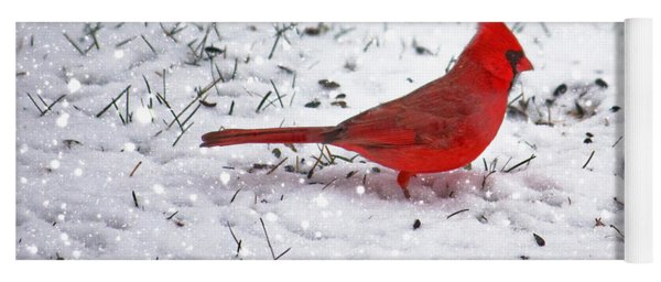 Cardinal In The Snow Yoga Mat