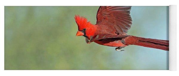 Cardinal On A Mission Yoga Mat