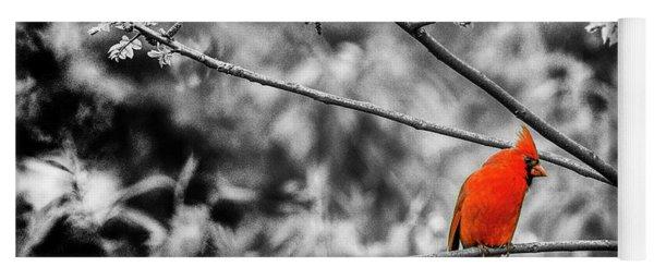 Cardinal... Yoga Mat