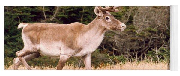 Caribou Yoga Mat