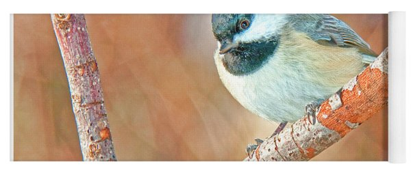 Carolina Chickadee Yoga Mat