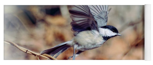 Carolina Chickadee - Come Fly With Me  Yoga Mat