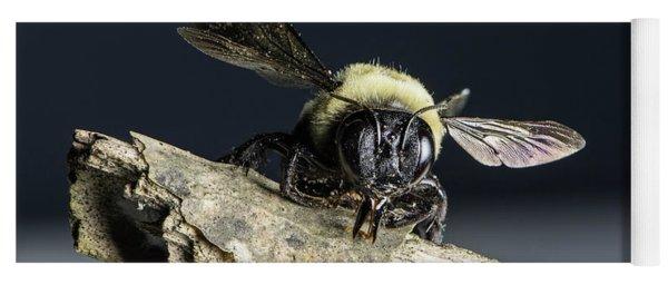 Carpenter Bee Yoga Mat