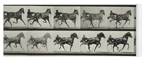 Carriage Driving Yoga Mat