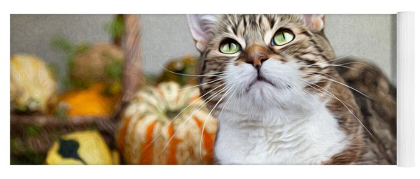 Cat And Pumpkins Yoga Mat