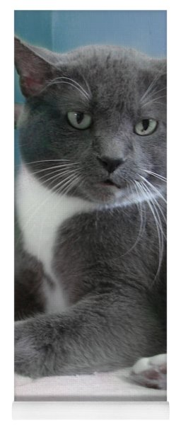 Cat Boticas Portrait  Yoga Mat