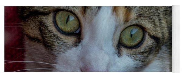 Cat Eyes Yoga Mat